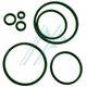 O-ring VITON de espessura / Touro 1 mm